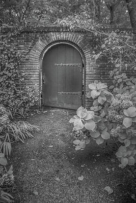 Photograph - Filoli One Step Beyond by Patricia Dennis