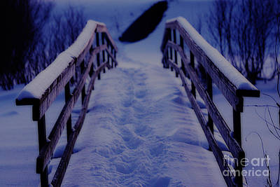 Photograph - One Way Out  by Cathy  Beharriell