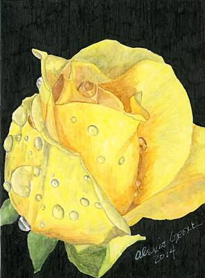 One Yellow Rose Art Print by Alexis Grone