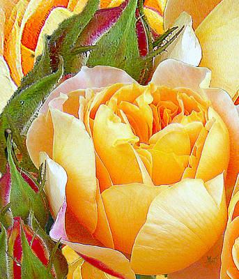 Photograph - One Yellow Rose by Michele Avanti