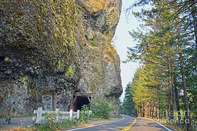Photograph - Oneonta Tunnel, Oregon by Catherine Sherman