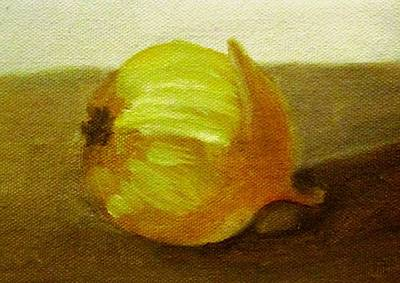 Catch Of The Day - Onion by Patricia Cleasby