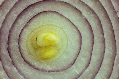 Photograph - Onion Rings by Jonathan Nguyen