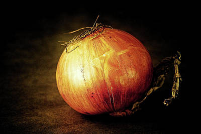 Photograph - Onion by Tatiana Travelways