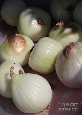 Food And Beverage Royalty-Free and Rights-Managed Images - Onions by Carol Groenen