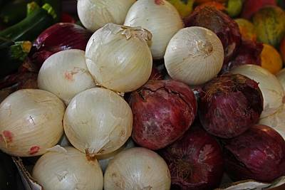 Photograph - Onions IIi by Michiale Schneider