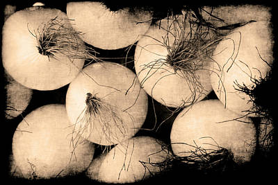 Photograph - Onions by Jennifer Wright
