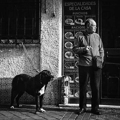 Animals Wall Art - Photograph - Onlookers  #señpr #dog #animals #pet by Rafa Rivas
