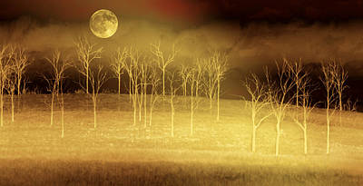 Moon Digital Art - Only At Night by Holly Kempe