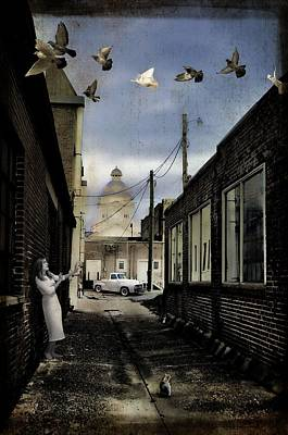 Photograph - Only For Alley Cats II by Jan Amiss Photography