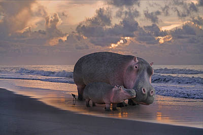 Hippopotamus Digital Art - Only On Topsail The Best Kept Secret by Betsy Knapp