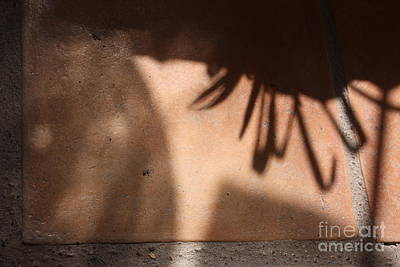 Photograph - Only The Shadow Knows by Brian Boyle