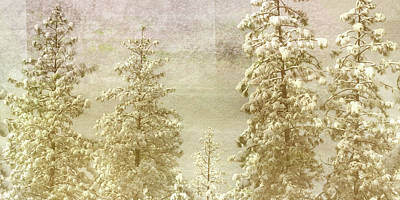 Fir Trees Mixed Media - Only This Moment by Bonnie Bruno