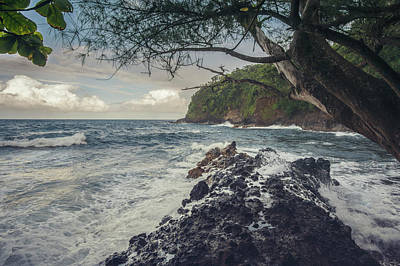 Photograph - Onomea Bay by Ray Devlin