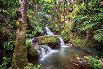 Photograph - Onomea Waterfalls 3 by Susan Rissi Tregoning