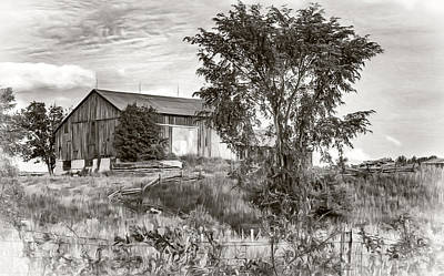 Verdant Digital Art - Ontario Barn 2 - Bw by Steve Harrington