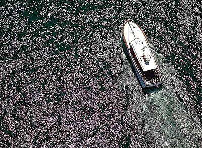 Photograph - Ontario Cruise by Valentino Visentini