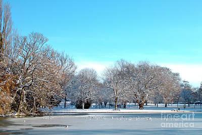 Photograph - On Thin Ice by Baggieoldboy