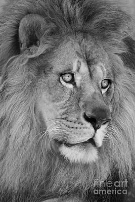 African Photograph - Onyo #19 Black And White by Judy Whitton