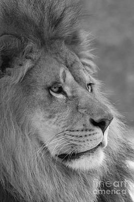 African Photograph - Onyo #9 Black And White  by Judy Whitton