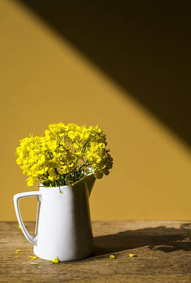 Still Life Photograph - Good Morning Sunshine- Rapeseed Flowers And White Mug   by Guna  Andersone