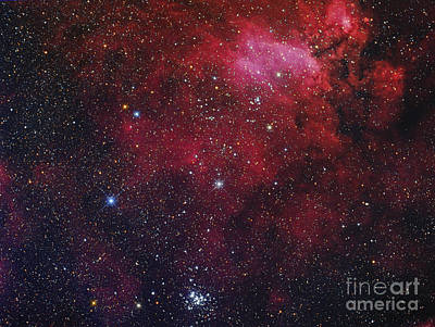 Open Cluster Ngc 6231, The Prawn Nebula Art Print by Roberto Colombari