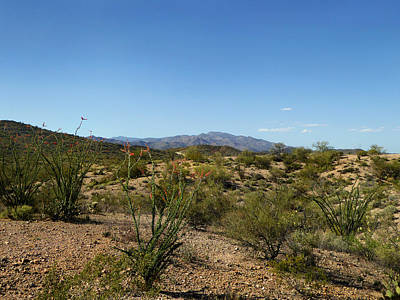 Open Desert Art Print