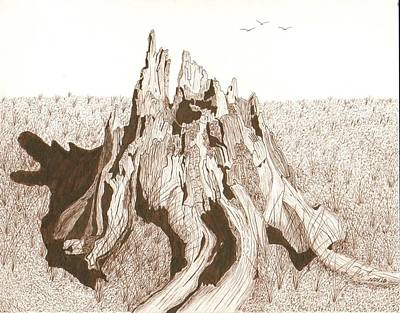 Sepia Ink Drawing - Open Ended by Pat Price