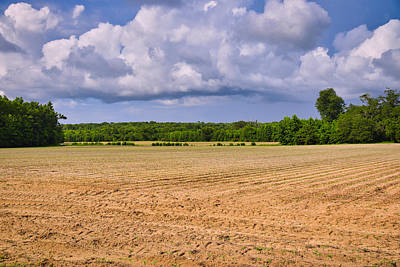 Photograph - Open Field by Linda Brown