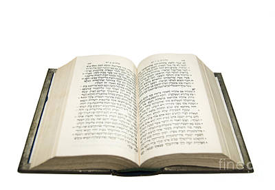 Judaica Photograph - Open Hebrew Bible  by Ilan Rosen