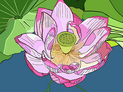 Open Lotus Art Print
