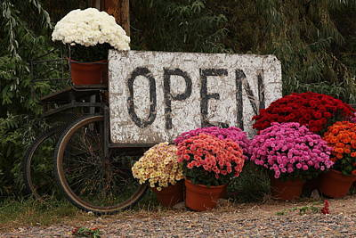 Travel Rights Managed Images - Open Sign with Flowers Fine art Photo Royalty-Free Image by James BO Insogna