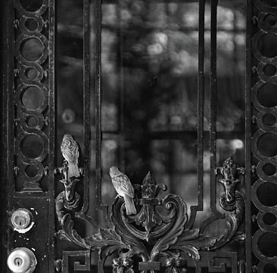 Photograph - Open The Door by Sue McGlothlin