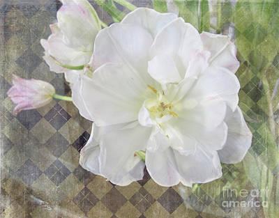 Digital Art - Open Tulip by Victoria Harrington
