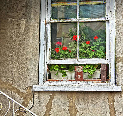 Photograph - Open Window by Tatiana Travelways
