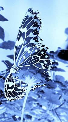 Photograph - Open Wings Negative Cyan by Rob Hans