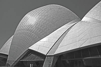 Photograph - Opera House Angles by Nareeta Martin
