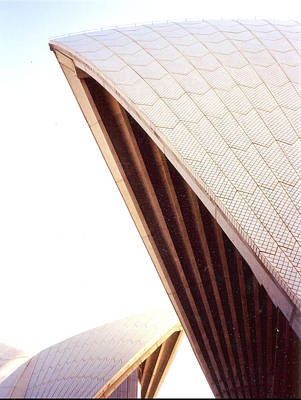 Photograph - Opera House Sale by Darren Stein