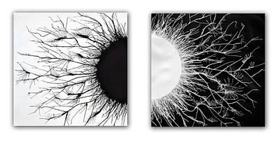 Opposites Original by Sumit Mehndiratta