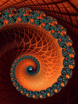 Digital Art - Orange And Aqua Spiral by Matthias Hauser