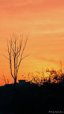 Paul Mccartney - Orange and black by Raghu Jana