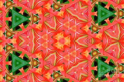 Photograph - Orange And Green Abstract by Debby Pueschel