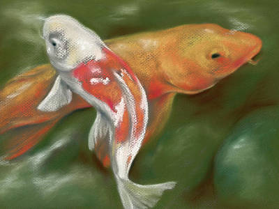 Pastel - Orange And White Koi With Mossy Stones by MM Anderson
