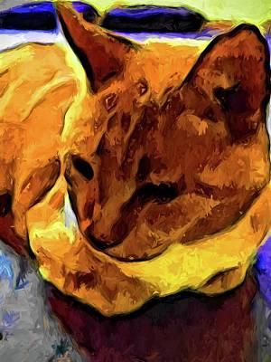 Digital Art - Orange And Yellow Cat by Jackie VanO