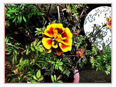 Art Print featuring the photograph Orange And Yellow Flower by Joan  Minchak