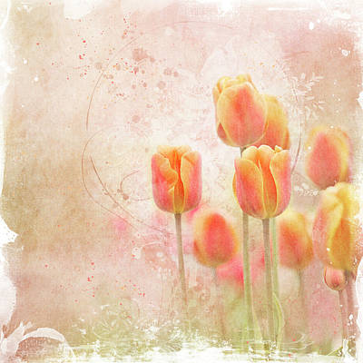 Photograph - Orange And Yellow Tulips by Margaret Goodwin