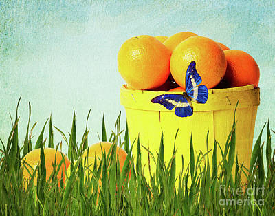 Snack Mixed Media - Orange by Angela Doelling AD DESIGN Photo and PhotoArt