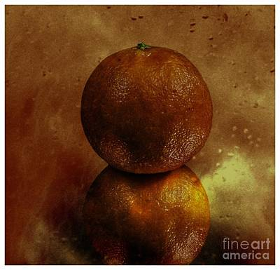 Photograph - Orange Art by Shirley Mangini