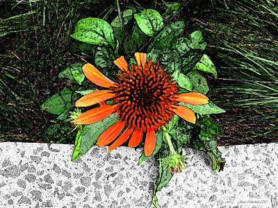 Art Print featuring the photograph Orange At Highline Nyc by Joan  Minchak