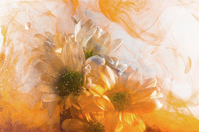 Photograph - Orange Awash by Kathryn Bell